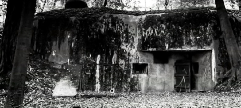 Neu im Catch-up Service: Das Prinzip Bunker