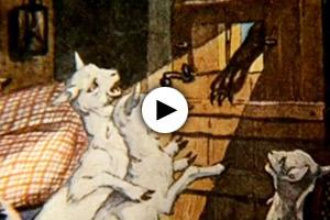 angriff-zukunft-wolf